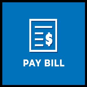 pay_ico